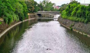 Brno revitalizací Svratky bojuje s povodněmi. Vedení města chce v protipovodňových opatřeních pokračovat