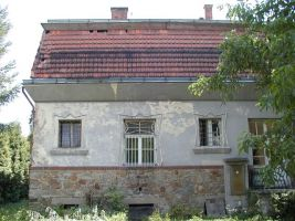 Bauerova vila, stav před rekonstrukcí