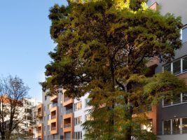 zdroj Central Group Popisek: Projekt investičních bytů v Petrohradské ulici ve Vršovicích