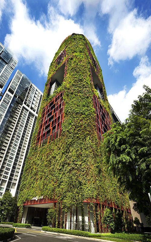 Oasia Hotel Downtown In Singapore By Woha Tv Architect