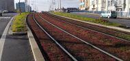 Hluku z tramvajových tratí odzvonilo. Jsou tu kolejové absorbéry