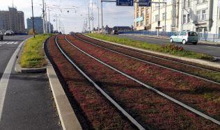 Hluku z tramvajových tratí odzvonilo. Jsou tu kolejové absorbéry.