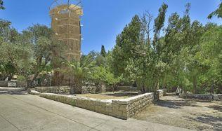 """Cactus"" by Rajniš emerged above Jerusalem"