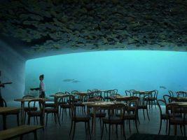 podmorska-restauracia-under-od-norskych-architektov-zo-studia-sn-hetta-4