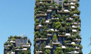Stromy rostoucí na domech: Italský architekt Boeri bojuje na půdě nepřítele