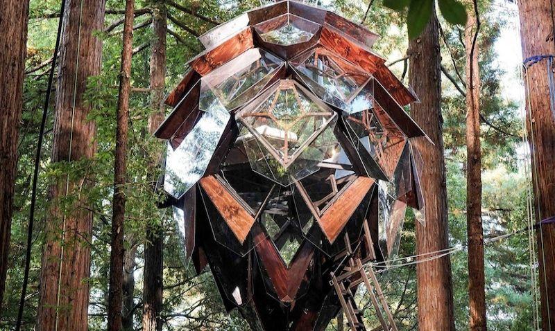 V severní Kalifornii nabízejí ubytování v šišce zavěšené mezi stromy