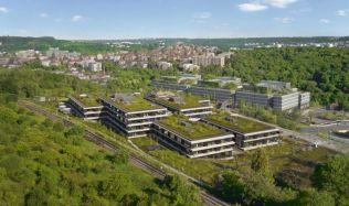Zelené střechy jsou čím dál populárnějších, jejich plocha se už zdvojnásobila
